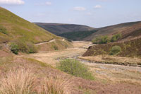 Langden Valley in the Trough of Bowland